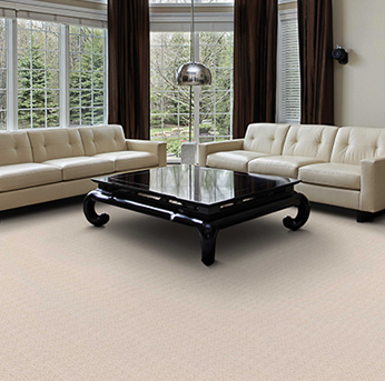 Living room scene with dark brown Infinity nylon carpet